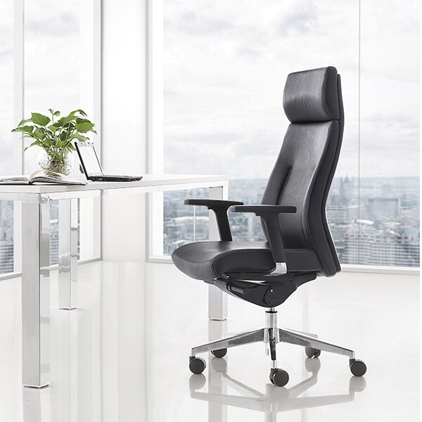 Toomer Executive High Back Multi-Function Ergonomic Office Chair by Latitude Run