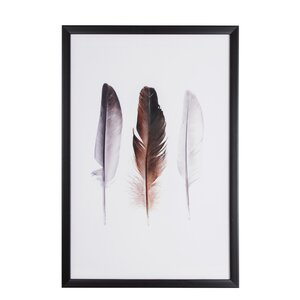 Spring 2015 Feather Trio Framed Graphic Art by Gra