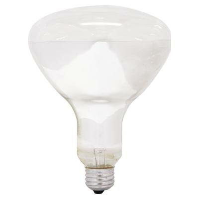 65W 120-Volt (2600K) Light Bulb by GE