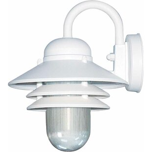 Great choice 1-Light Outdoor Barn Light By Volume Lighting