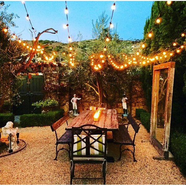 50-Light 50 ft. Globe String Lights by String Light Company