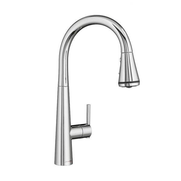 Edgewater Pull Down Bar Faucet with Re-Trax and Dock-Tite by American Standard