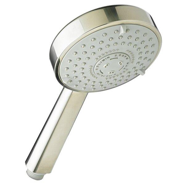 Multi Function Handheld Shower Head by American Standard