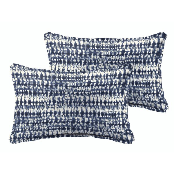 Costin Graphic Outdoor Throw Pillow (Set of 2) by Brayden Studio