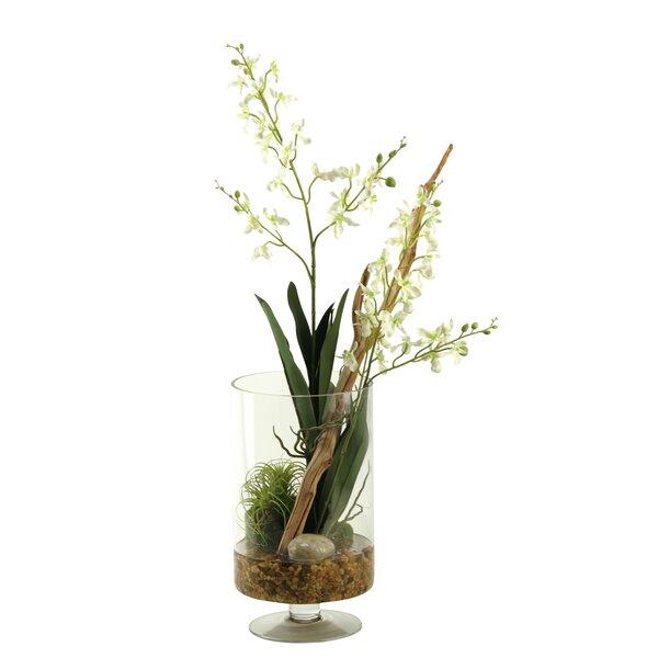 Orchids Floral Arrangement by Brayden Studio