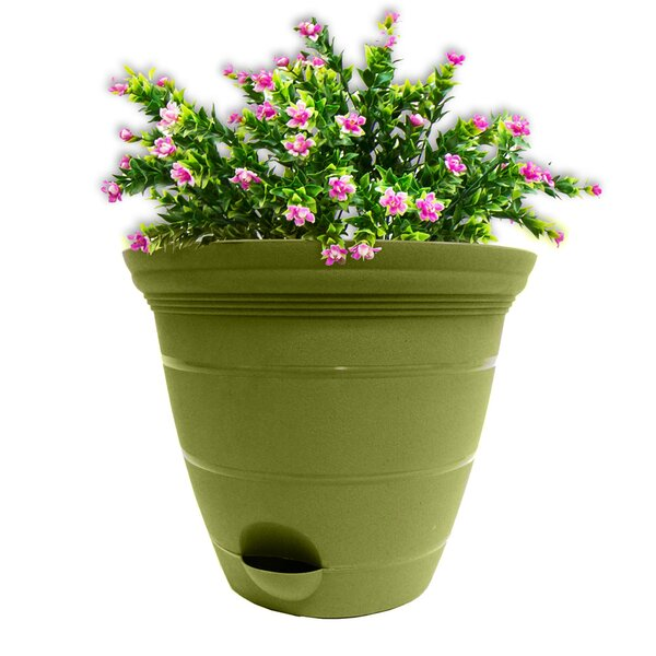 Self Watering Plastic Pot Planter (Set of 3) by Misco Home and Garden