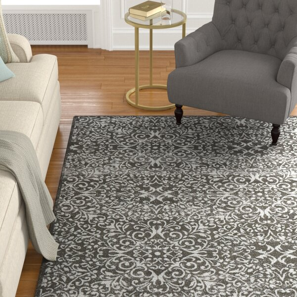 Eagleview Area Rug by Alcott Hill