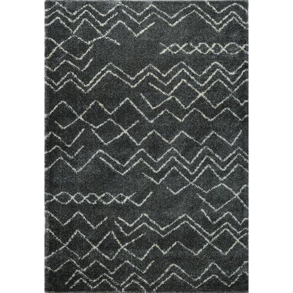 Cedar Shaggy Dark Grey Area Rug by Foundry Select