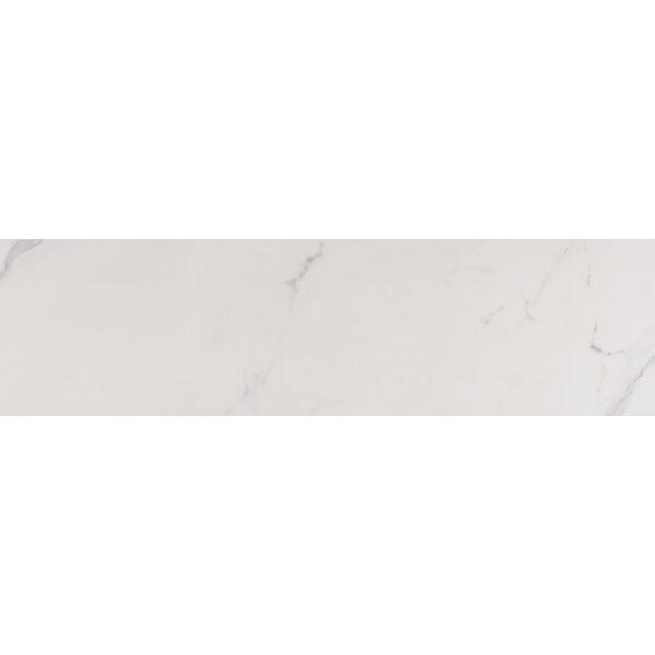 9 x 36 Porcelain Field Tile in Marbella Carrara by MSI