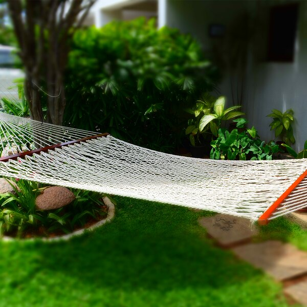 Tibbs Close Weave Double Tree Hammock by Millwood Pines