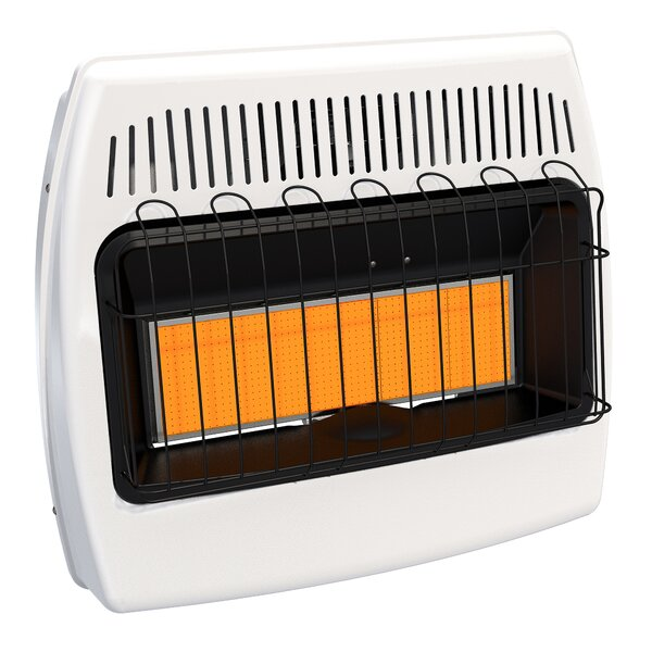 30,000 BTU Wall Mounted Natural Gas Manual Vent-Free Heater by Dyna-Glo