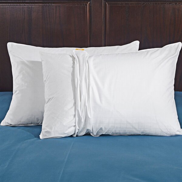Fayetteville Vienna Down Pillow (Set of 2) by Eider & Ivory