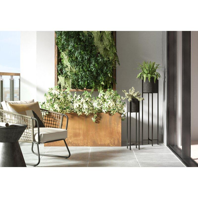 Elisabetta Corten Steel Planter Box Reviews Allmodern