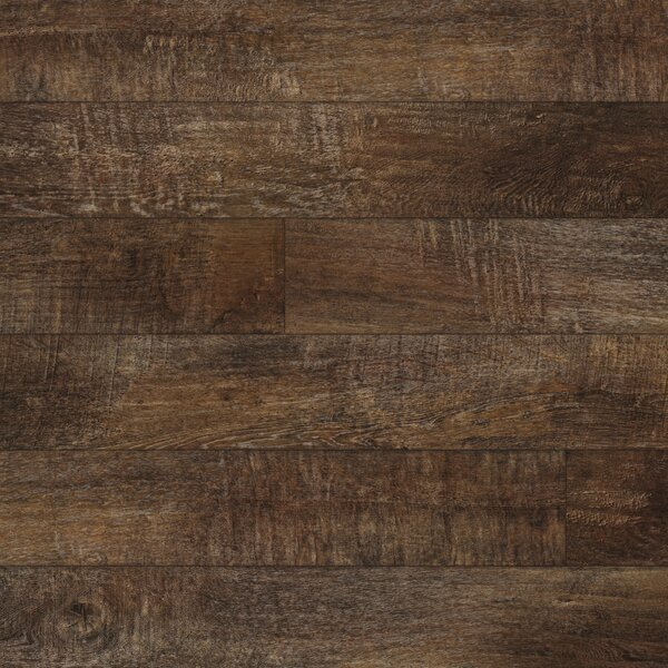 Restoration 6'' x 51'' x 12mm Laminate Flooring in Firewood by Mannington
