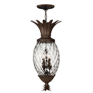 Best Reviews Plantation 4 Light Outdoor Hanging Lantern By Hinkley Lighting