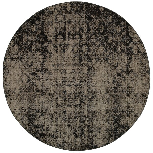 Raiden Gray/Black Area Rug by Bungalow Rose