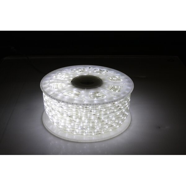 6 ft. LED Rope Light by American Lighting LLC