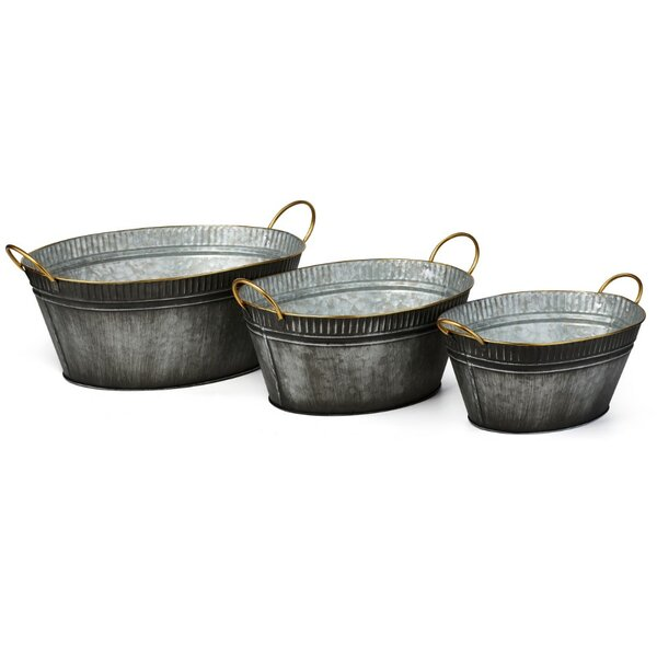Temaraia 3-Piece Iron Pot Planter Set by Union Rustic