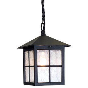 Popovich 1-Light Outdoor Hanging Lantern By Charlton Home Outdoor Lighting