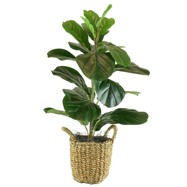 Artificial Fake Plants You Ll Love In