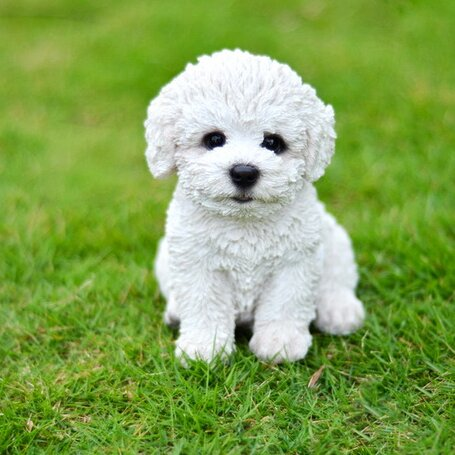 hi line gift ltd sitting bichon frise puppy statue reviews wayfair