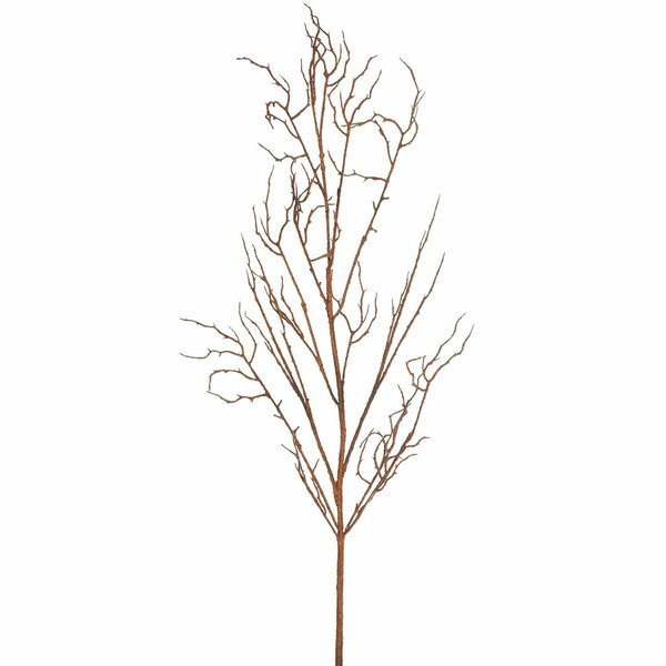 Twig Branch by Loon Peak