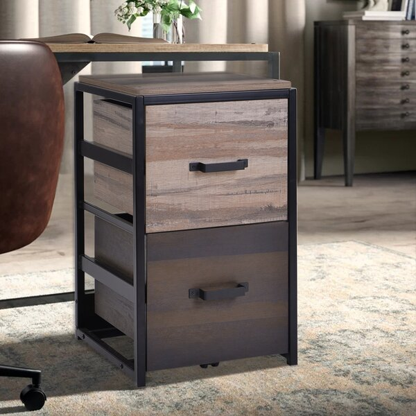 Carrasquillo 2-Drawer Vertical Filing Cabinet
