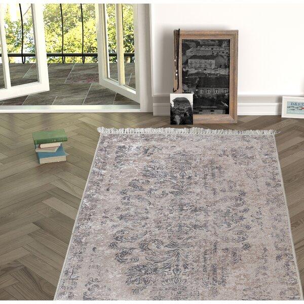 Mcclendon Beige Indoor/Outdoor Area Rug by House of Hampton