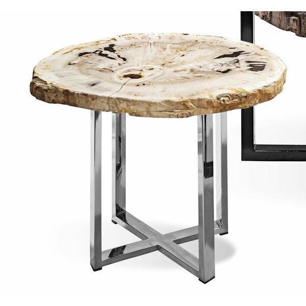 Petrified Wood End Table by Ibolili Ibolili