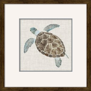 Sea Turtle II by Naomi Mccavitt Framed Painting Print by Star Creations