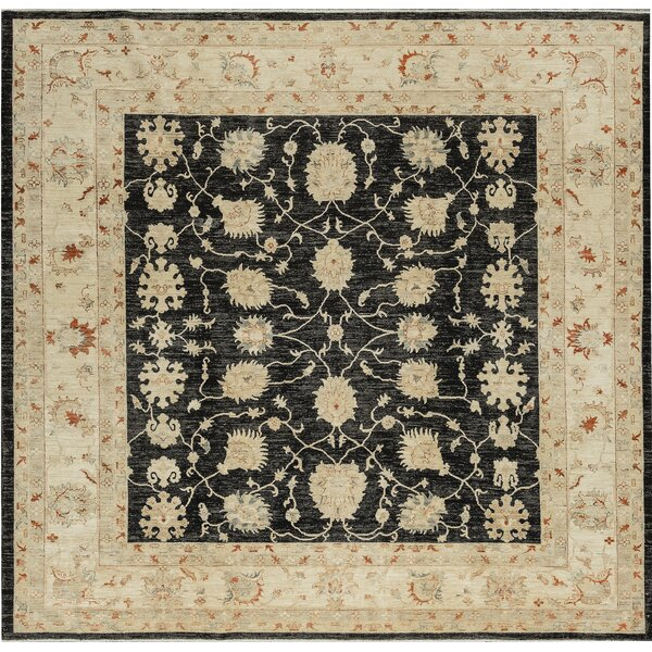 One-of-a-Kind Ziegler Hand-Knotted Wool Black/Beige Indoor Area Rug by Bokara Rug Co., Inc.