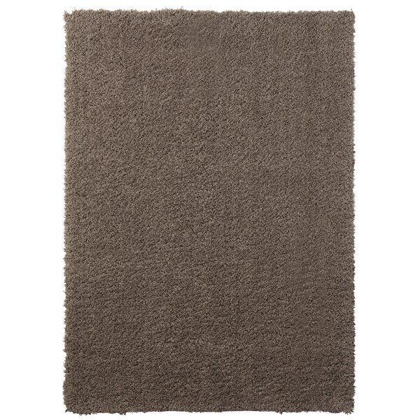 Ali Teddy Shag Brown Area Rug by Wrought Studio