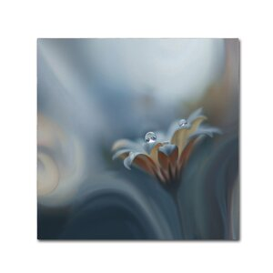 Infinite Longing' Graphic Art on Wrapped Canvas by Trademark Fine Art