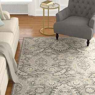Best Reviews Arcadia Gray Area Rug By Charlton Home