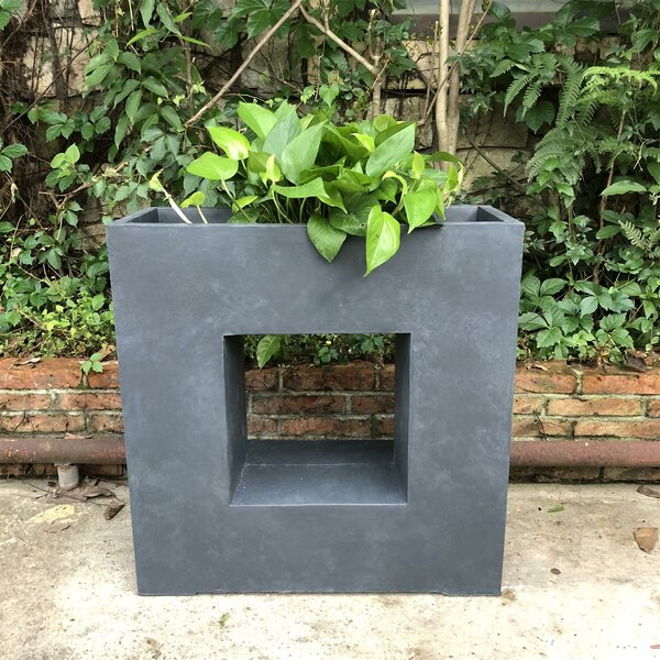 Gallagher Square Platform Planter Box by Williston Forge