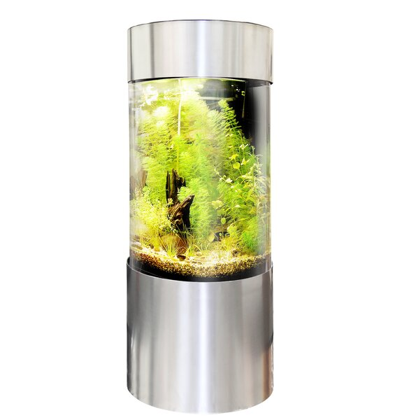 Berkely Aquarium Tank by Tucker Murphy Pet