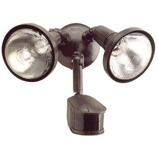 2-Light Outdoor Spotlight By CooperRegentLighting Outdoor Lighting