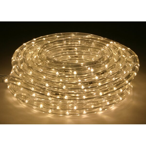 5 ft. LED Rope Light by The Holiday Aisle