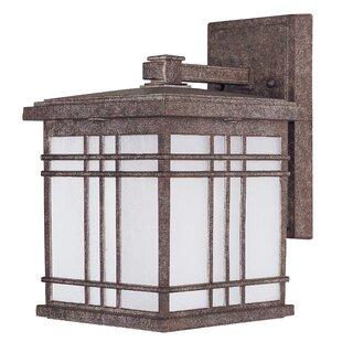 Best Reviews Sawyer 1-Light Outdoor Wall Lantern By Loon Peak