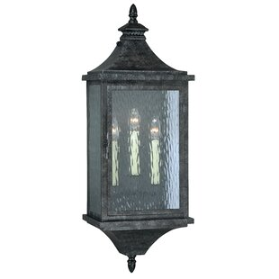 Bargain Wilhelmina 3-Light Outdoor Sconce By Darby Home Co