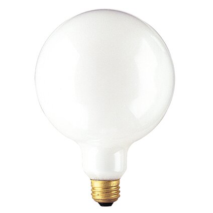 150W Frosted 125-Volt (2720K) Incandescent Light Bulb (Set of 8) by Bulbrite Industries