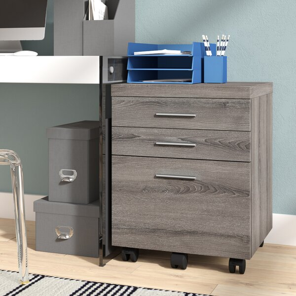 Canipe 3-Drawer Mobile Lateral File by Brayden Studio