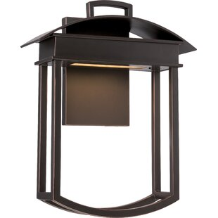 Savings Crooms 1-Light Outdoor Sconce By Darby Home Co
