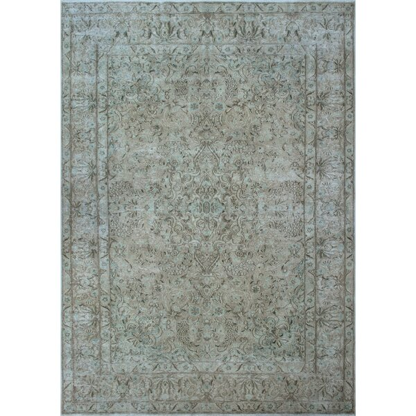 Fremont Vintage Distressed Hand Knotted Wool Beige Area Rug by Rosecliff Heights