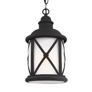 Find the perfect Burwood 100W 1-Light Outdoor Pendant By Darby Home Co