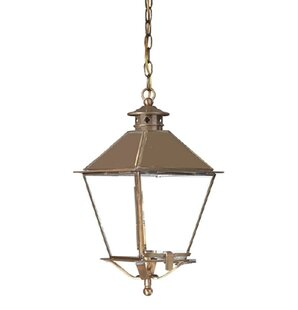 Theodore 1-Light Outdoor Hanging Lantern By Darby Home Co Outdoor Lighting