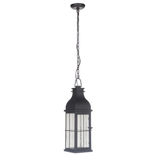 Shopping for Wylie 1-Light Outdoor Pendant By Breakwater Bay