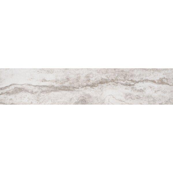 Bernini Bianco 4 x 18 Porcelain Field Tile in Cream/Warm gray by MSI