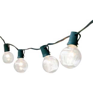 Compare prices 25-Light 25 ft. Globe String Lights By Wintergreen Lighting