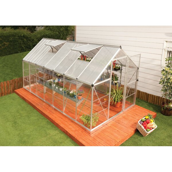 Shearson 6.1 Ft. W x 14.1 Ft. D Greenhouse by Darby Home Co